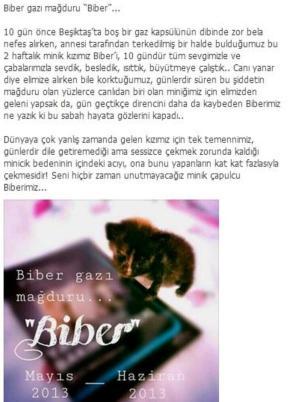 taksim -13haz -Biber